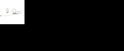 DPA 4066